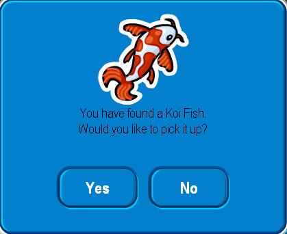 Koi Fish - Cove